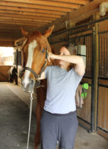 Kendra using TMJ therapy on horse
